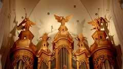 Über der Haupt-Orgel