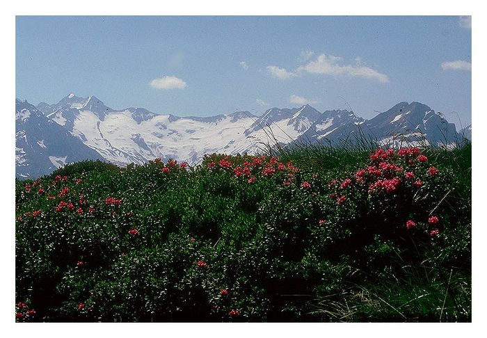 ...über die Berge weit ....