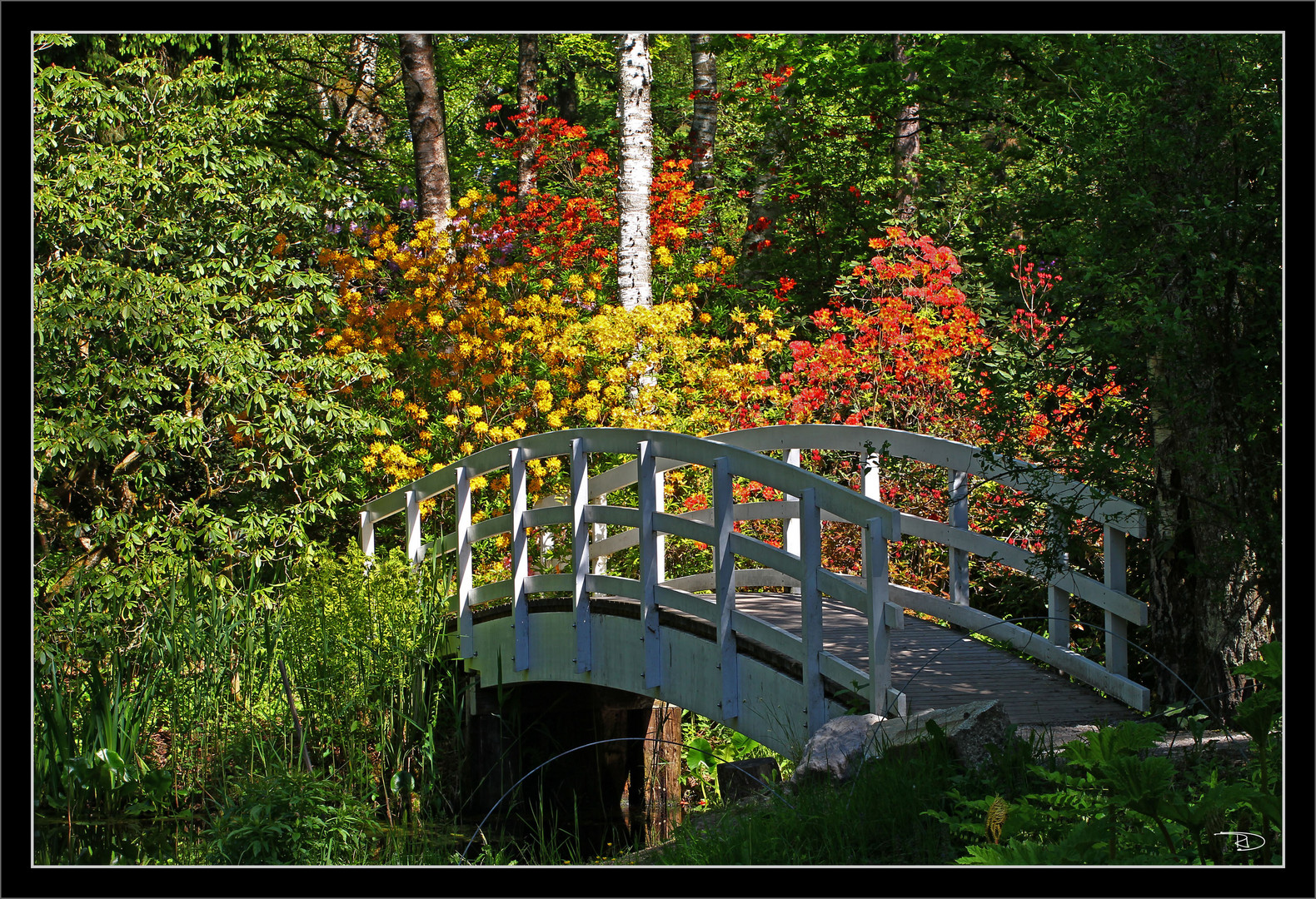 über die Brücke musst du gehn