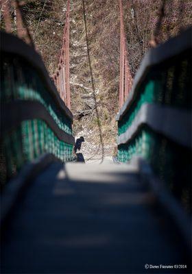 """... über """"diese"""" Brücke musst Du Gehn ..."""