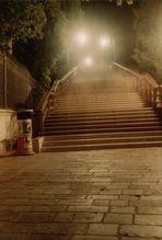 Über dieser Treppe liefen 1000 Menschen - VENEDIG5