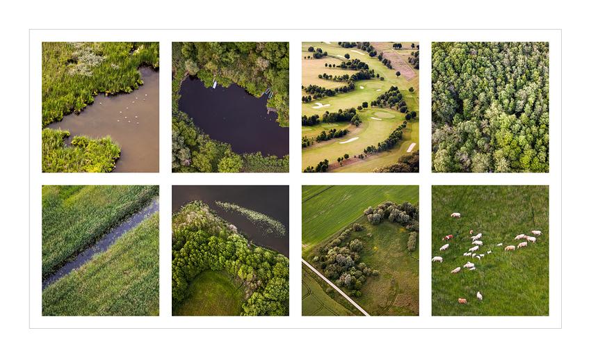 Über Felder, Wiesen und Wälder