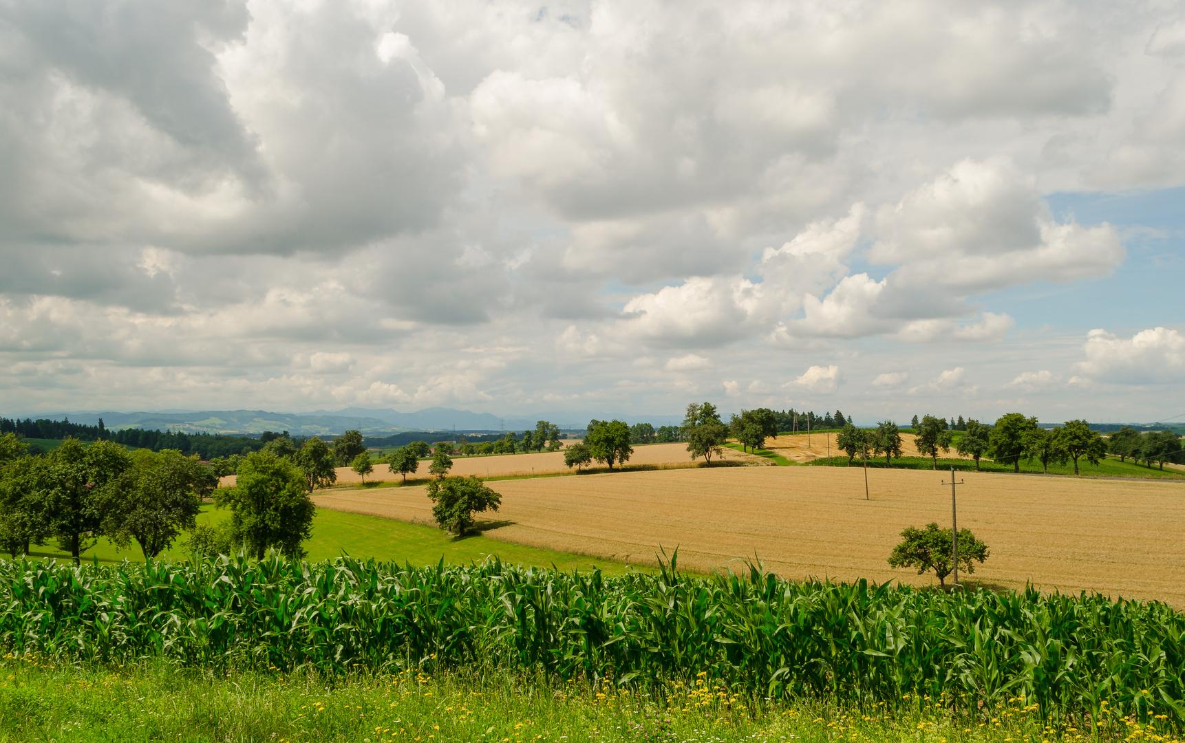 Über Hügel und Felder