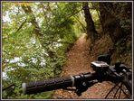 über Stock und Stein dem Fluss nach... so macht biken Spass !