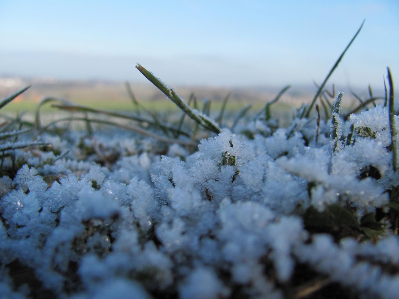 Überfrorene Grasfläche