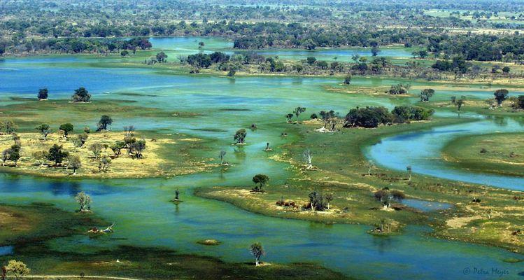 Über'm Okavango Delta