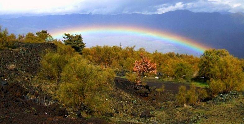 überm Regenbogen