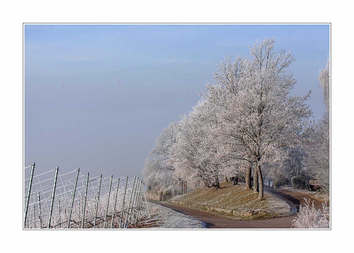 überm Winternebel