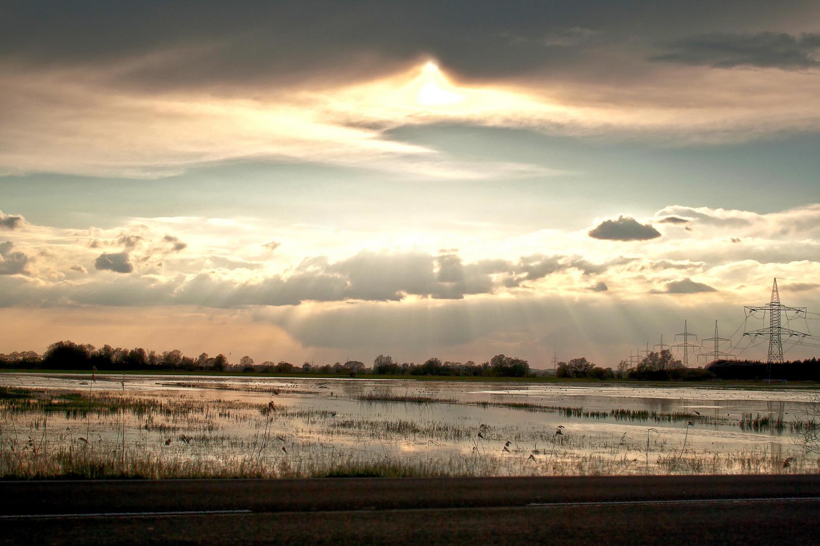 überschwemmte Havelwiesen