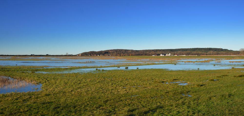 Überschwemmte Salzwiesen