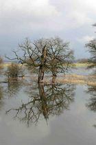 Überschwemmungen..