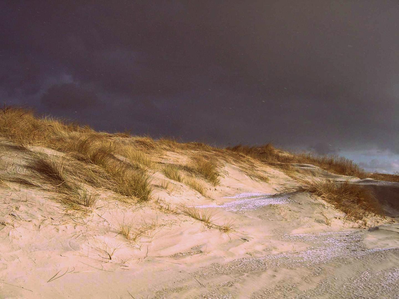 Überwinde den Sturm und finde die Sonne