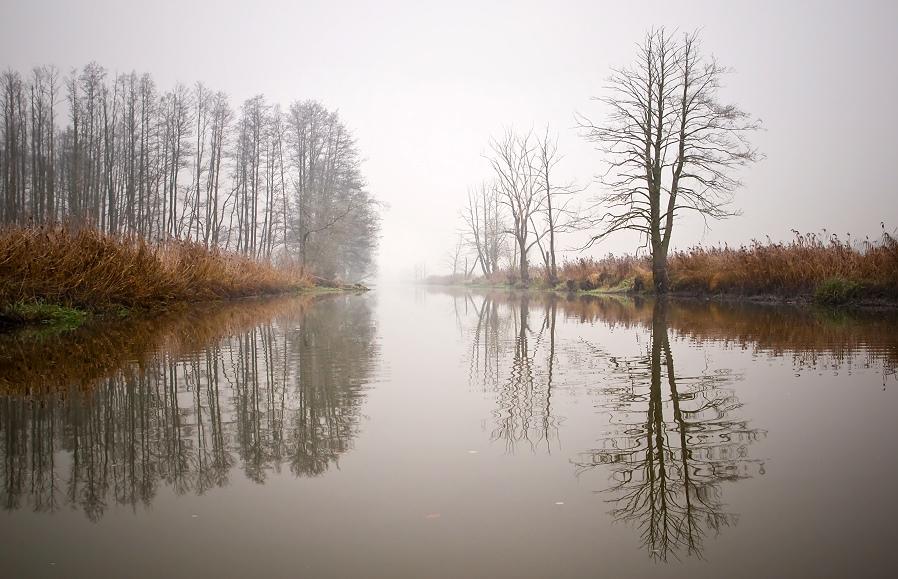 Ücker im Nebel