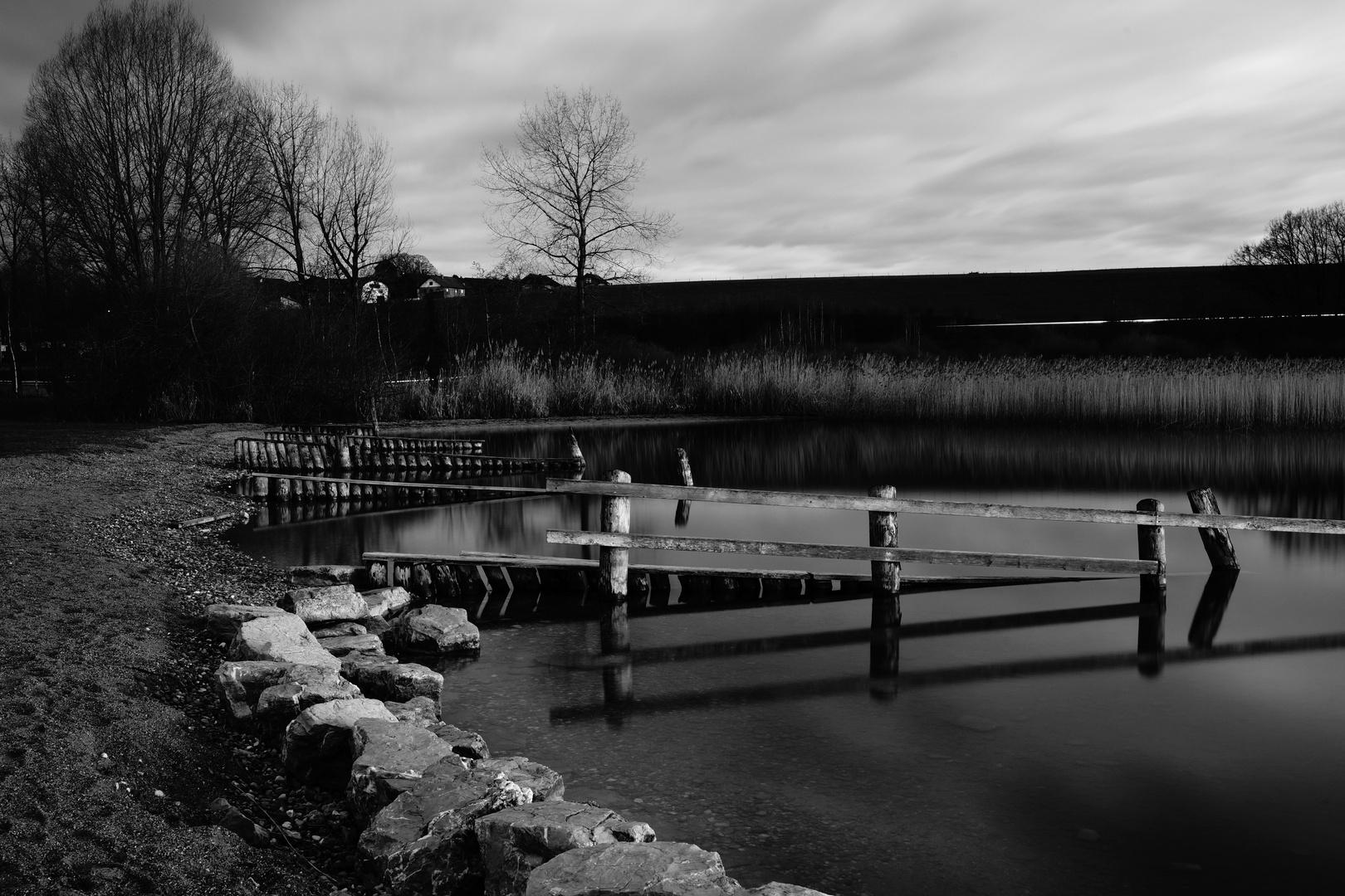 Ufer am Seebad Wallersee II