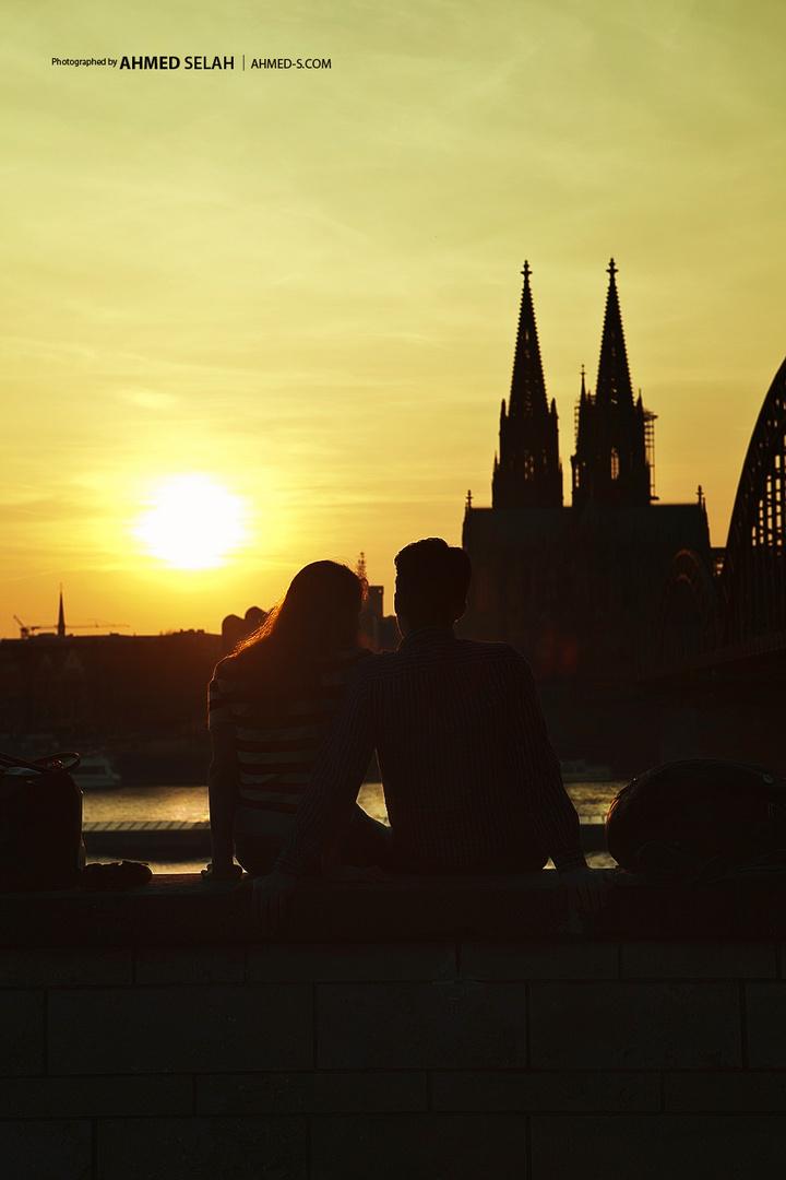 Ufer des Rheins