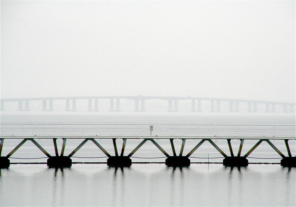 Ufer Tejo