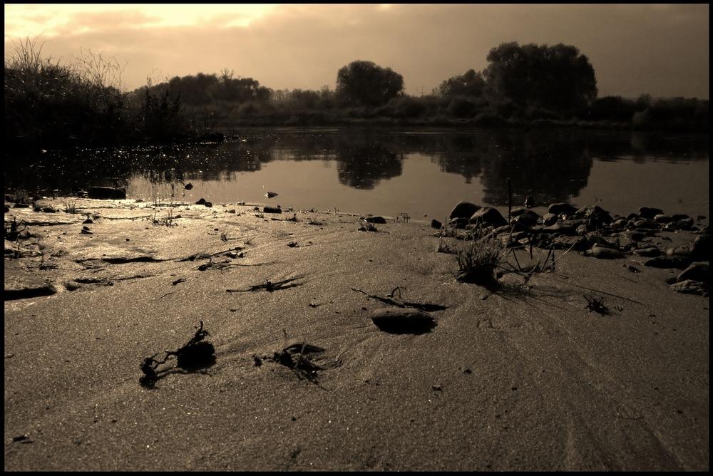Uferlandschaft der Elbe ...