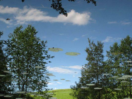 UFO-Sichtung  20.06.03 17:53:21