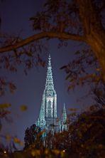 Ulmer Münster in der Nacht II