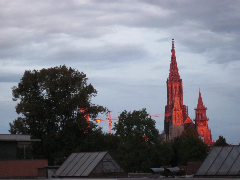 Ulmer Münster in lachs