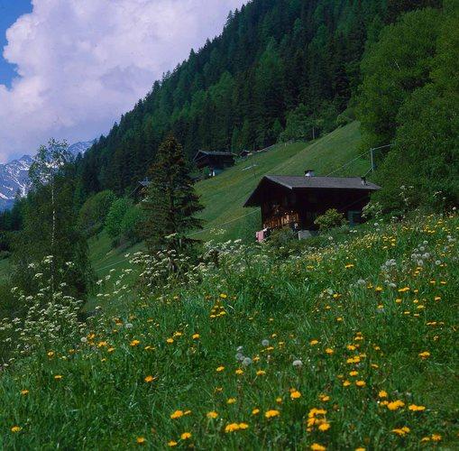 Ultental - Südtirol