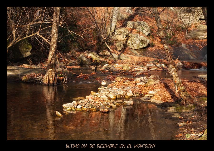 Ultimo dia de Diciembre en el Montseny