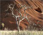 Uluru #2