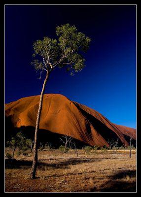 ~Uluru~