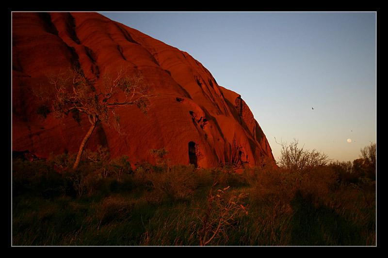 Uluru am Weihnachtsmorgen II