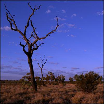 Uluru Impressions #1