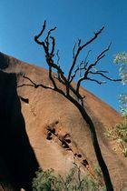 Uluru mal anders...
