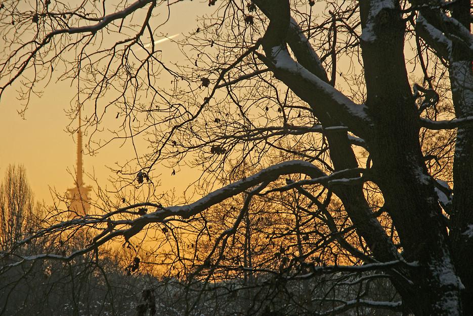 Um 8 Uhr los bei –9 °C, 11.01.09 – 07