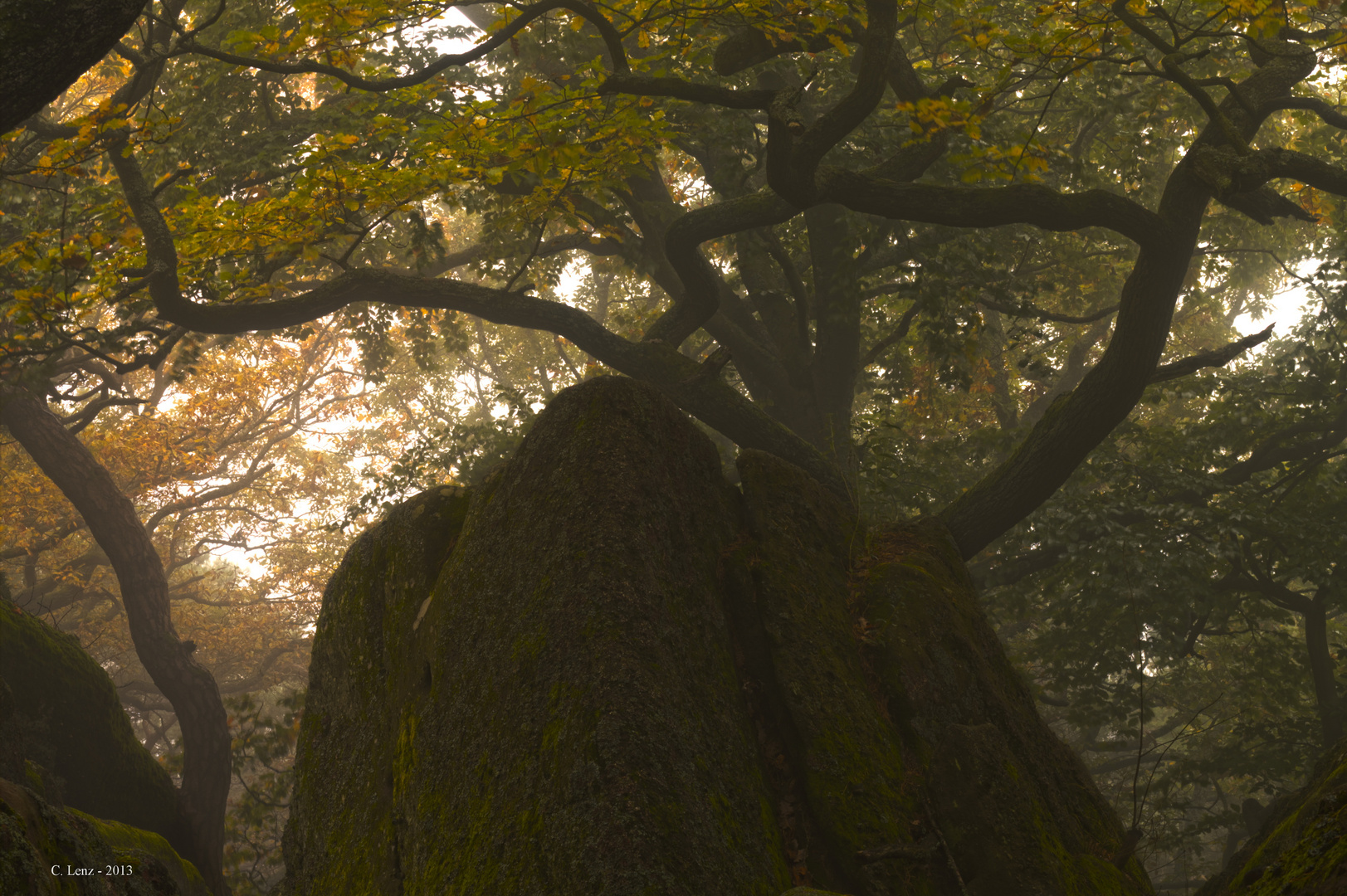 Um den Heidenfels, Bad Dürkheim 3 (Nebel)