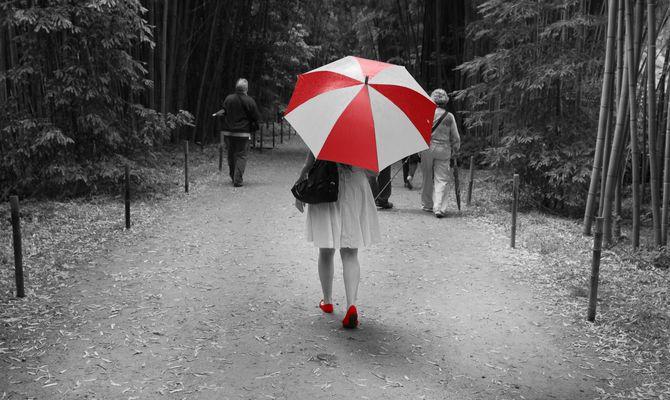 Umbrella Corporation .