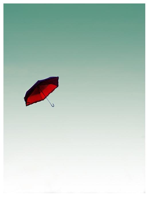 Umbrella's Flight.