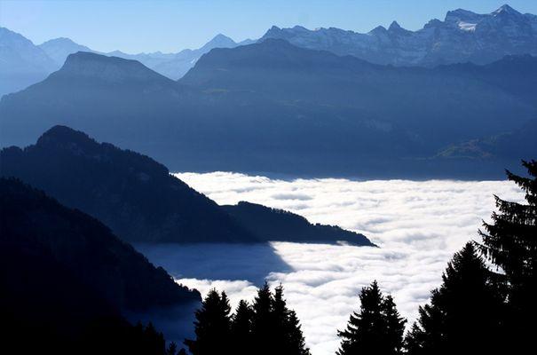 Umgeben vom Nebel
