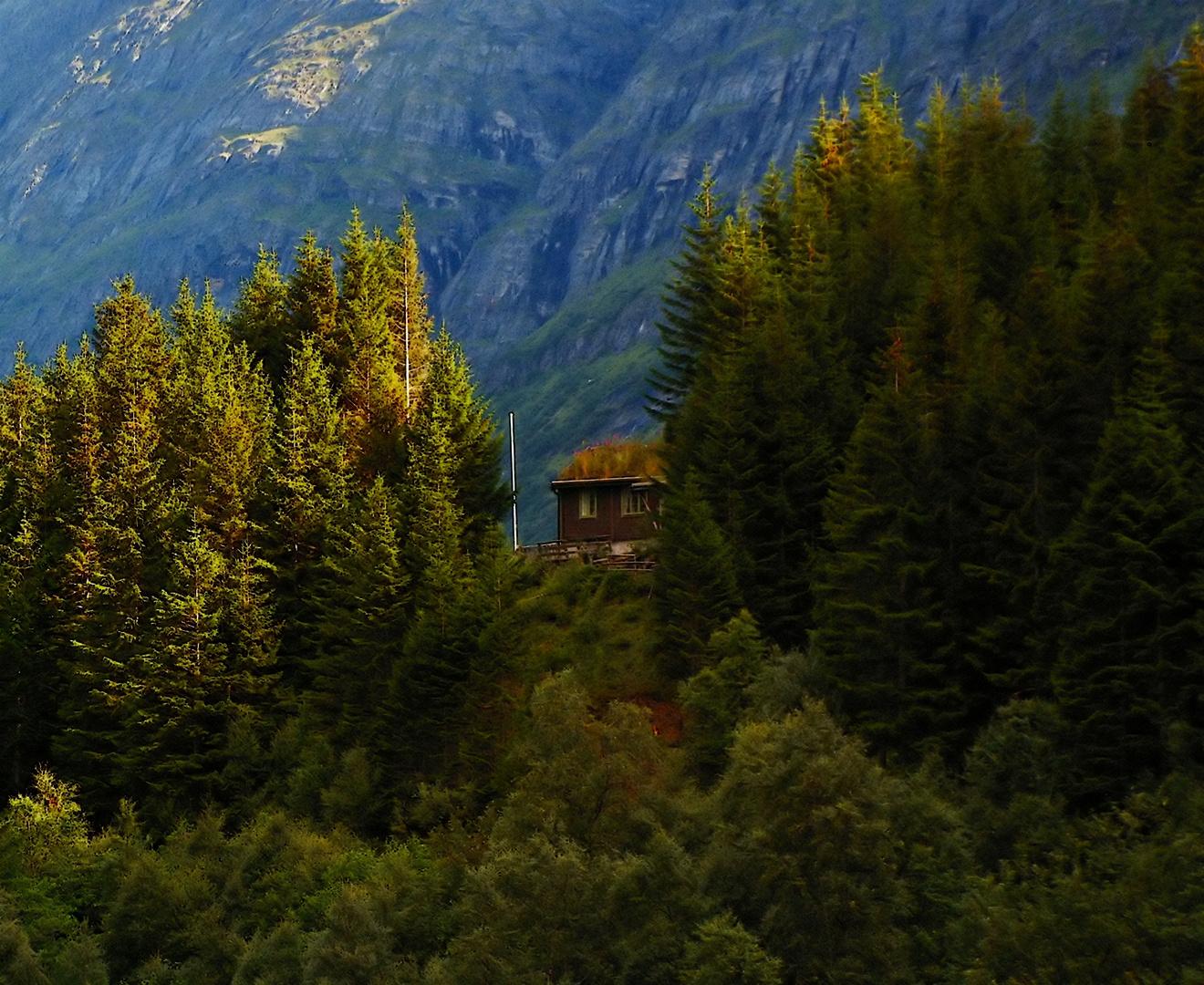 Umgeben von Bergen und Bäumen
