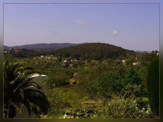 Umgebung von San Carlos de Peralta !