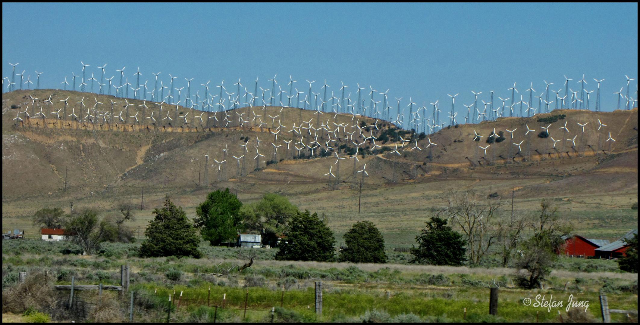 Umweltfreundliche Energiegewinnung - American Style