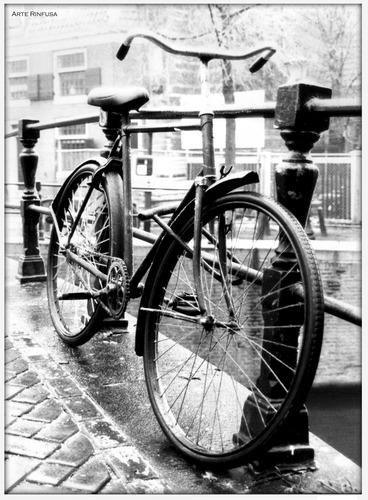 Umweltfreundliches Amsterdam