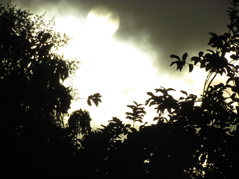 Un Amanecer nublado
