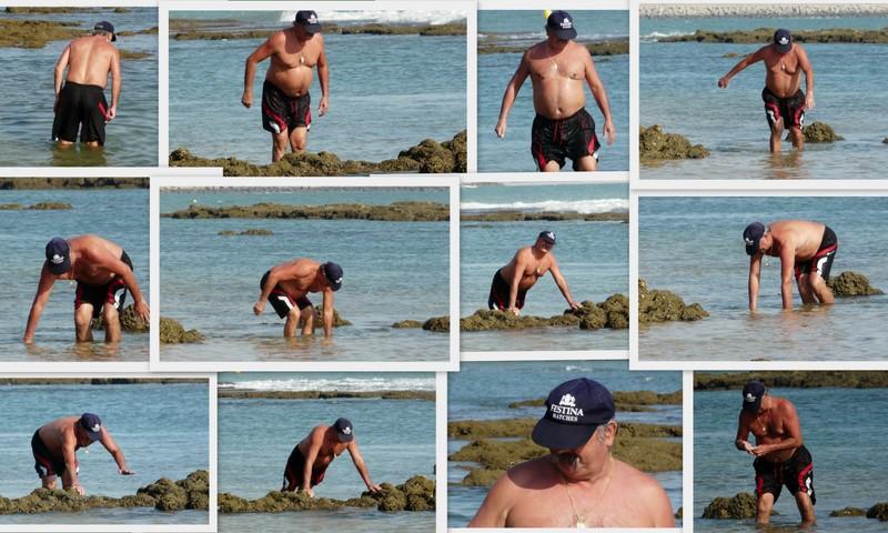 Un Amigo en Puerto Sherry ¿ Cogiendo cangrejos ?