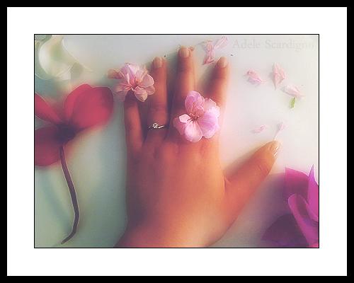Un anello..