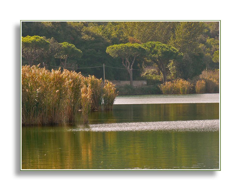 Un angolo del lago d'Averno