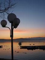 Un angolo di lago