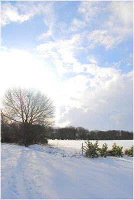 Un après midi dans la neige