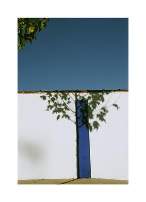 ....un árbol...,