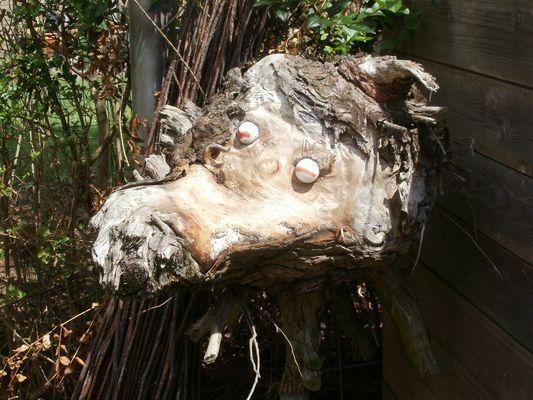 un arbre et........beaucoups d'annees