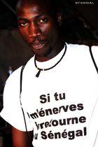 Un artiste reggae man au festival