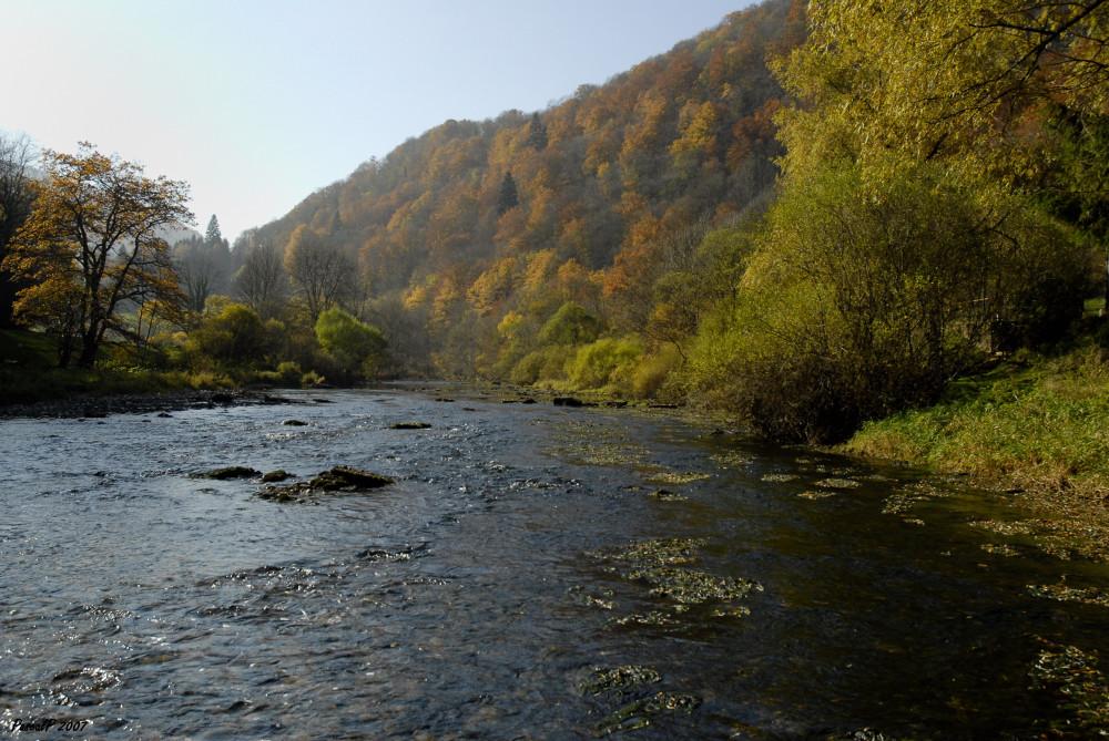 Un automne au bord de l'eau
